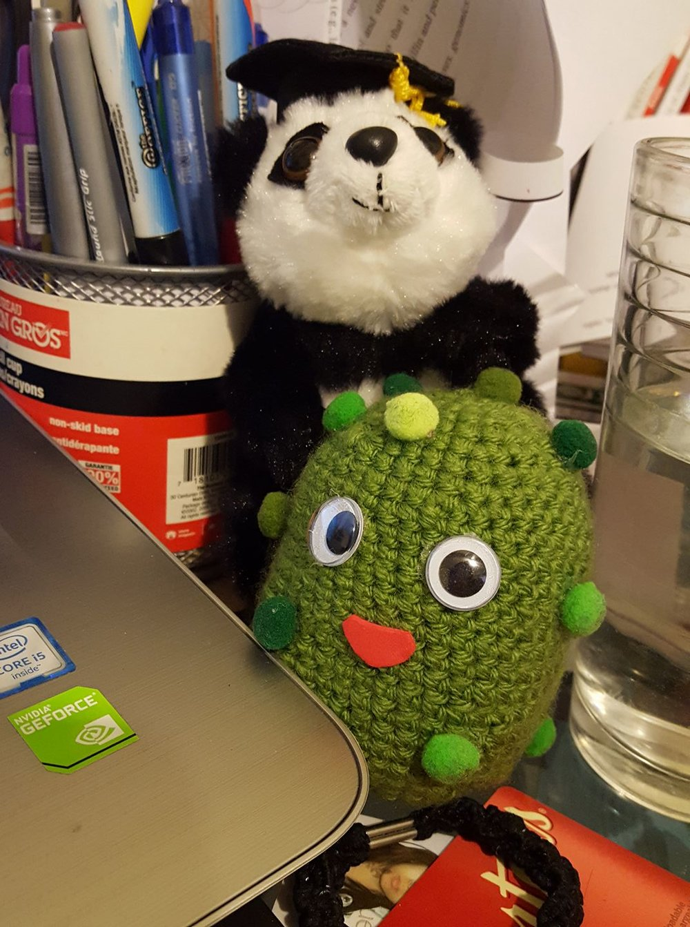 Pandas are also very happy in acquiring a new friend in their microbiota!!