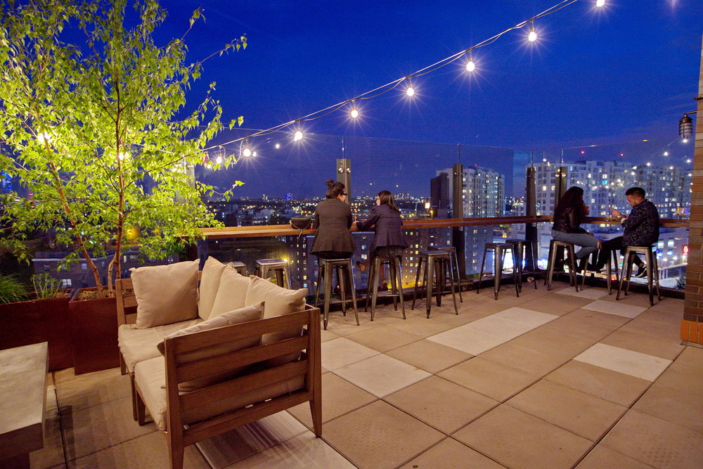 A Rooftop Oasis -