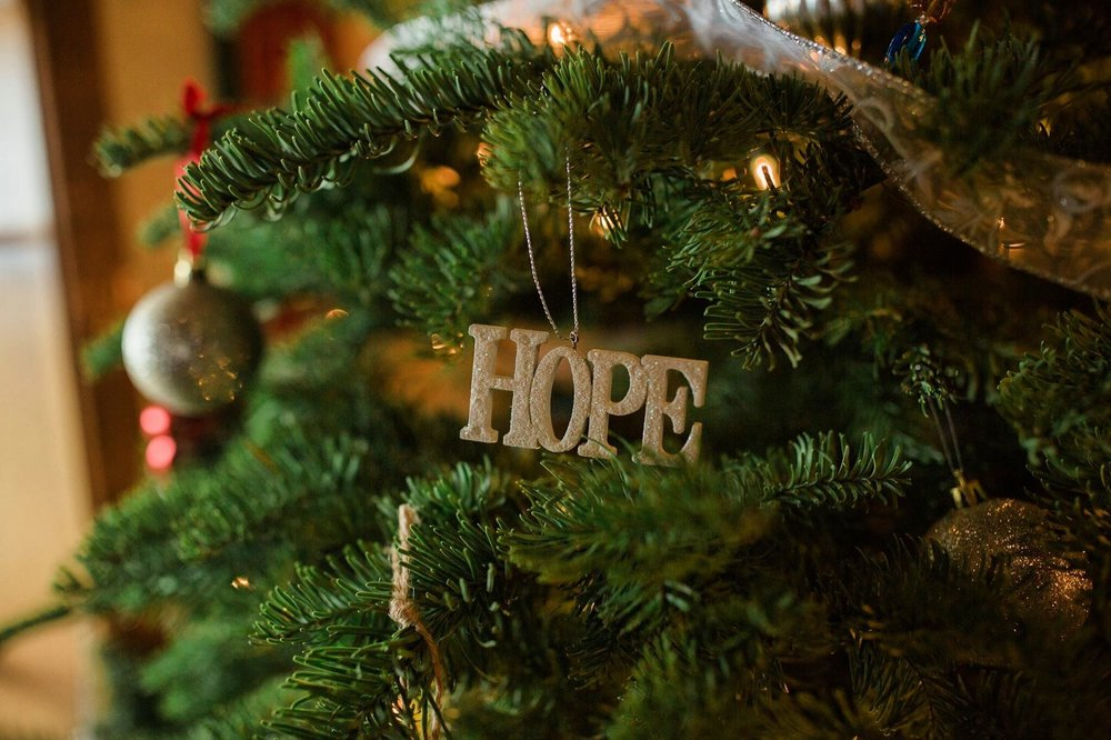 This ornament stood out to me as I passed by the tree. Absolutely love the word Hope.
