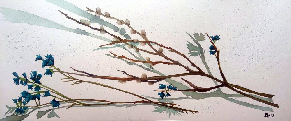 """Buds & Willows"" Watercolour on board, 10x24"" $700. unframed  SOLD!"