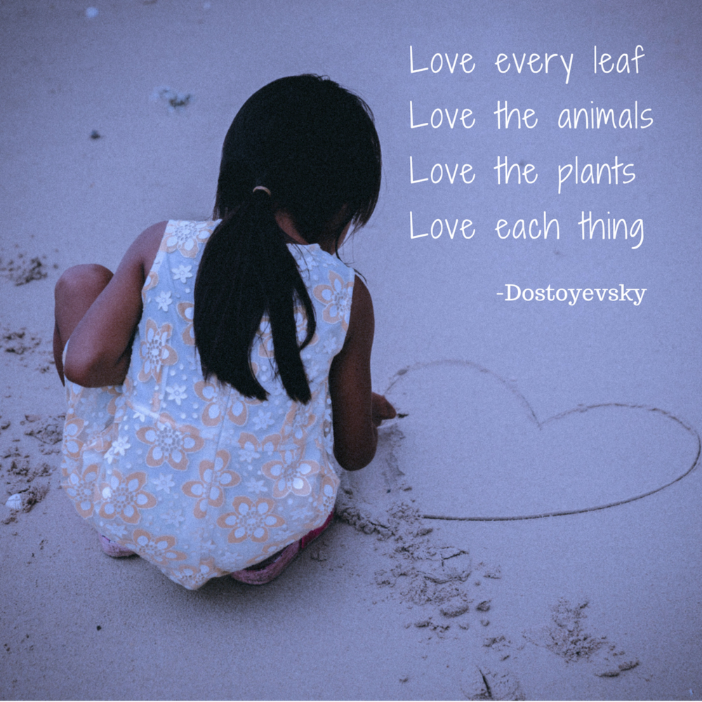 Love everything; lifeisaprettyword.com blog post; Photo by @JakobOwens on Unsplash