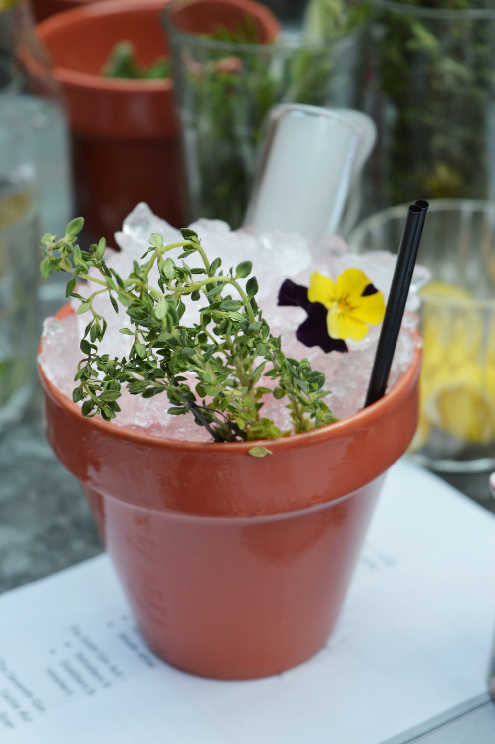 Cocktails in Flowerpots