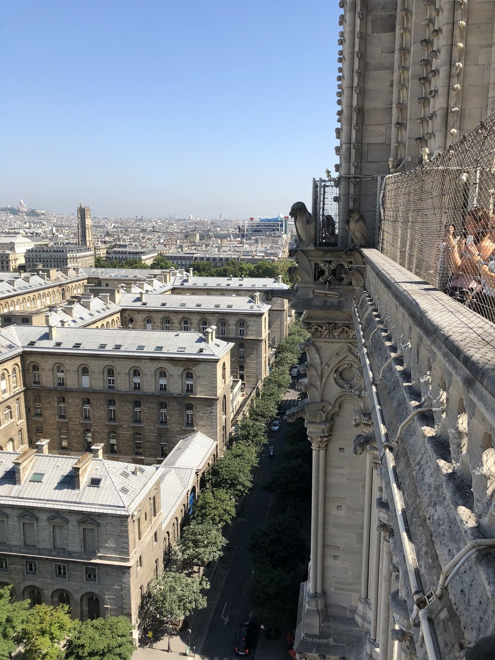 The view from Notre Dame, Paris