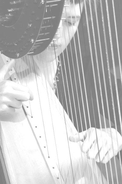 through-strings bw_overexposed.jpg