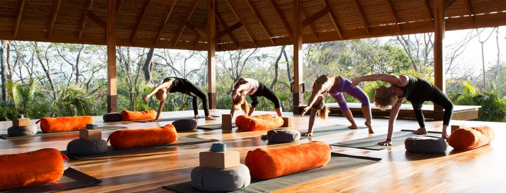 BodhiTree_yoga.jpg