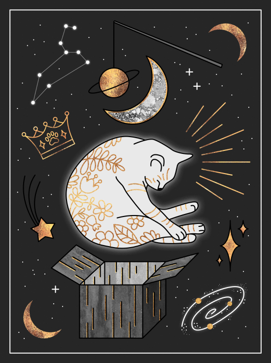 Ruler Of The Universe - Dreaming Cat