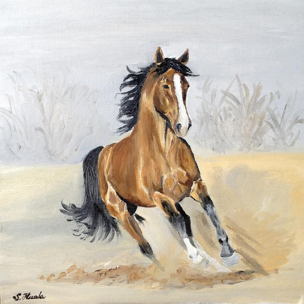 Desert Horse - CRP:TX.jpg