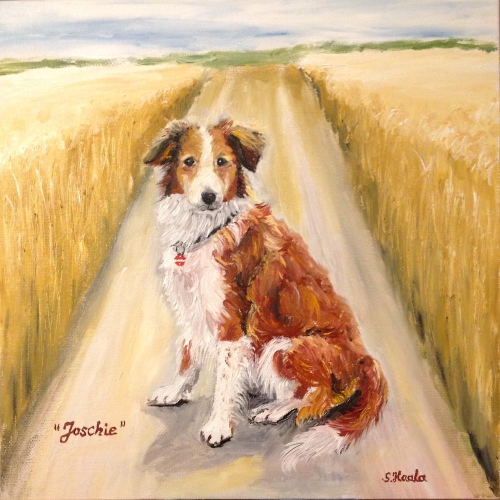 Joschie-Dog-CRP:TX.jpg
