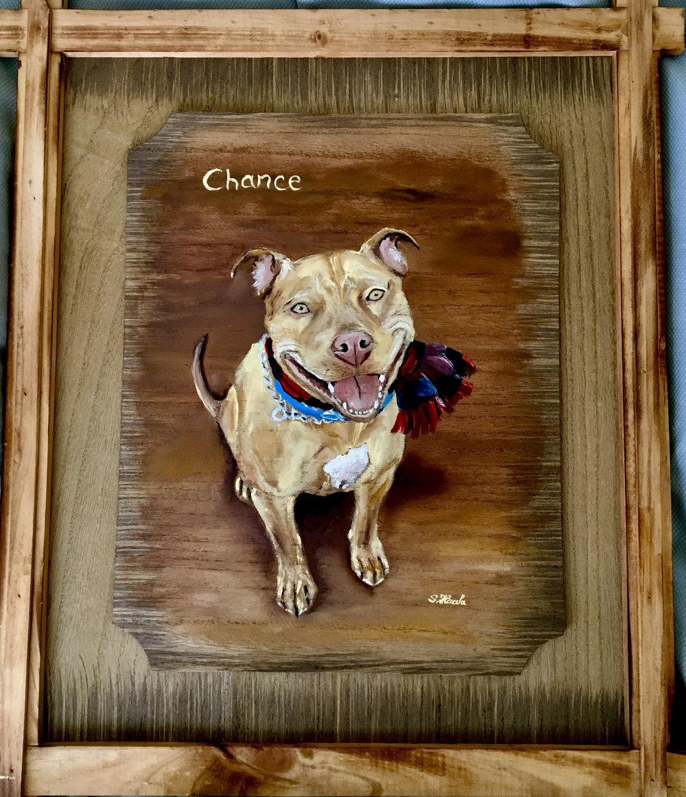 Chance-Dog-ATL:GA.jpg