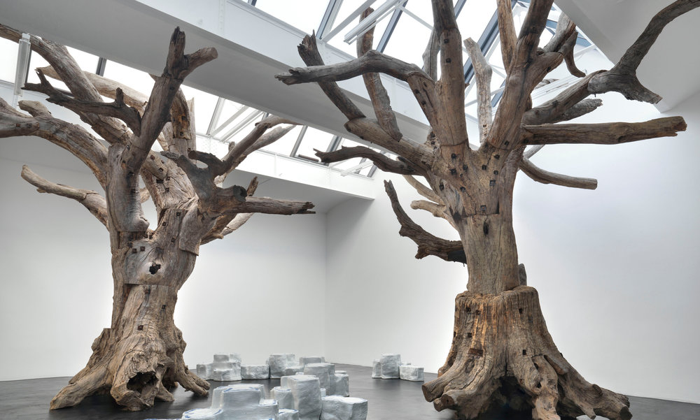 """""""Trees"""". Ai Wei Wei, 2009."""