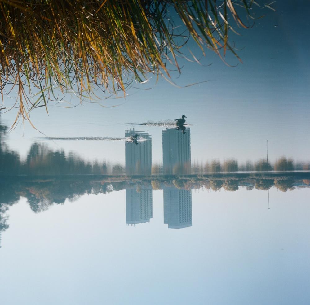LauraLynnPetrick_Landscape_001.JPG