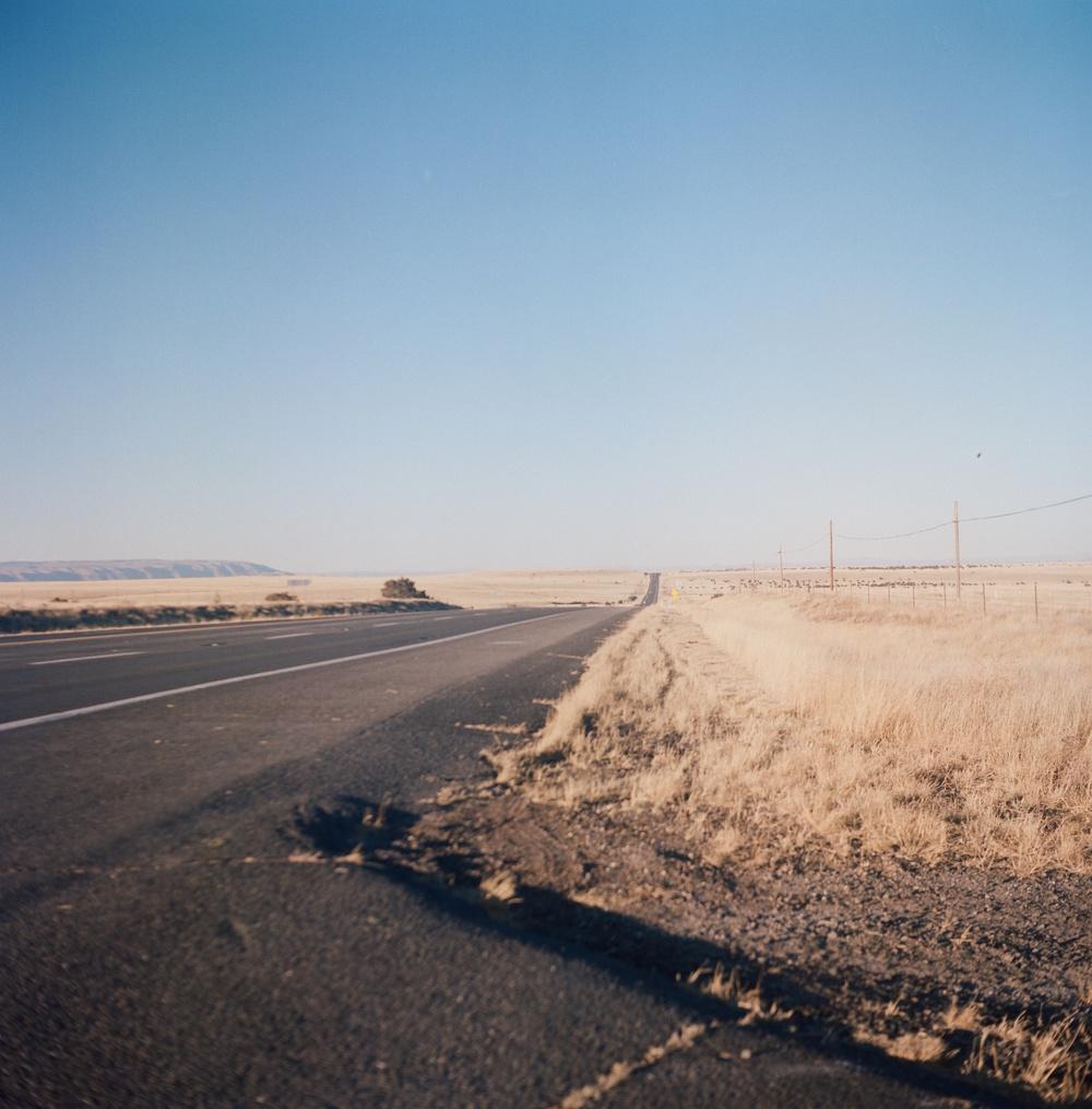 LauraLynnPetrick_Landscape_002.JPG