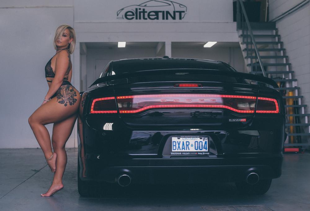 elite-15449.jpg