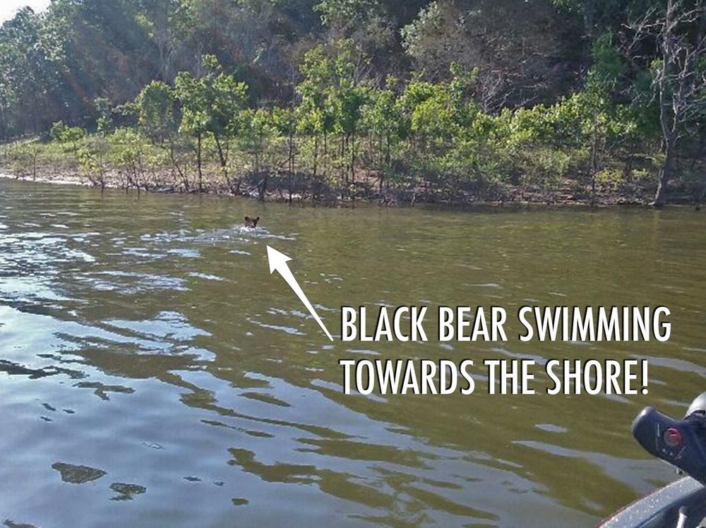 broken-bow-lake-fishing-guide