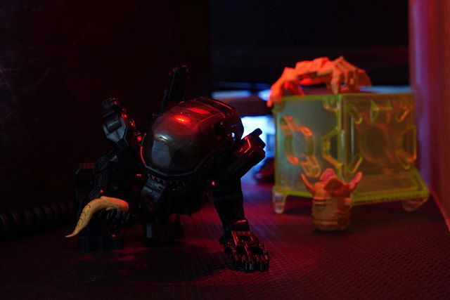 Super excited to get this little alien! . . . . . . #photooftheday #52toys #megabox #beastbox #aliens #xenomorph #alien #space #instalike #spaceycubeboi