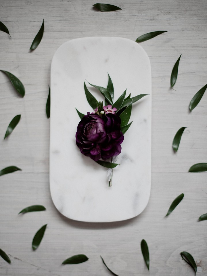 plum ranunculus, purple wax flower, italian ruscus