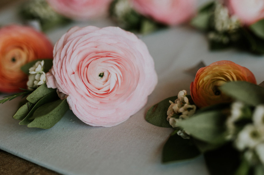 blush and peach ranunculus, white wax flower, bay laurel