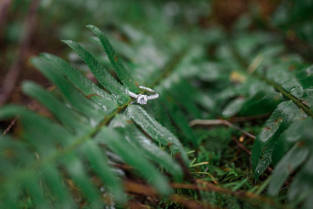 Silver Falls Wedding photographer, nature wedding ring photos