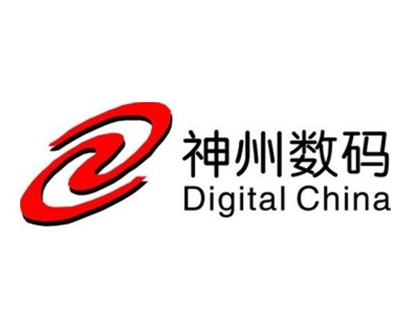 Digital China.jpg