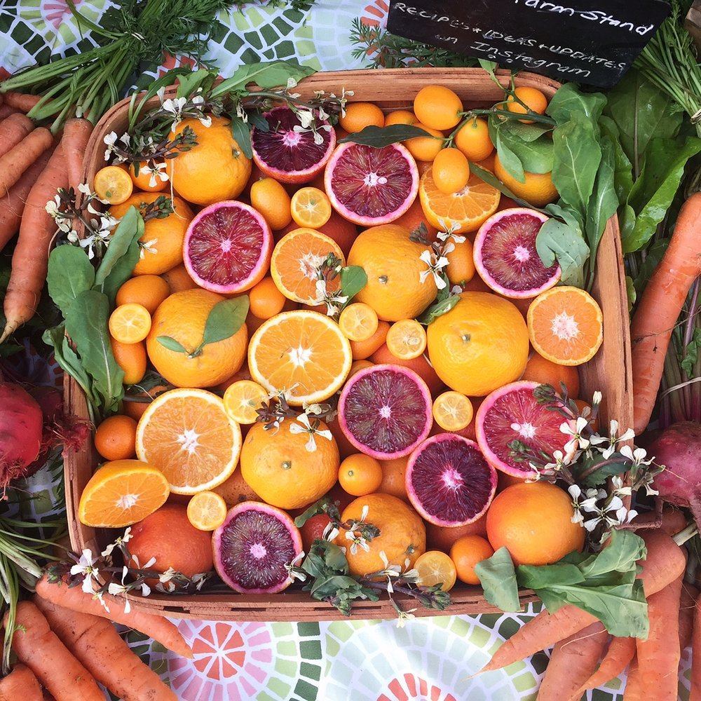 Schaner Farm Stand Display