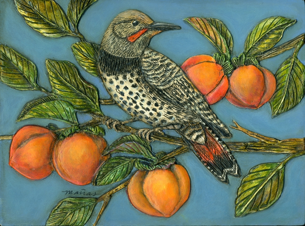 Flicker in a Persimmon Tree