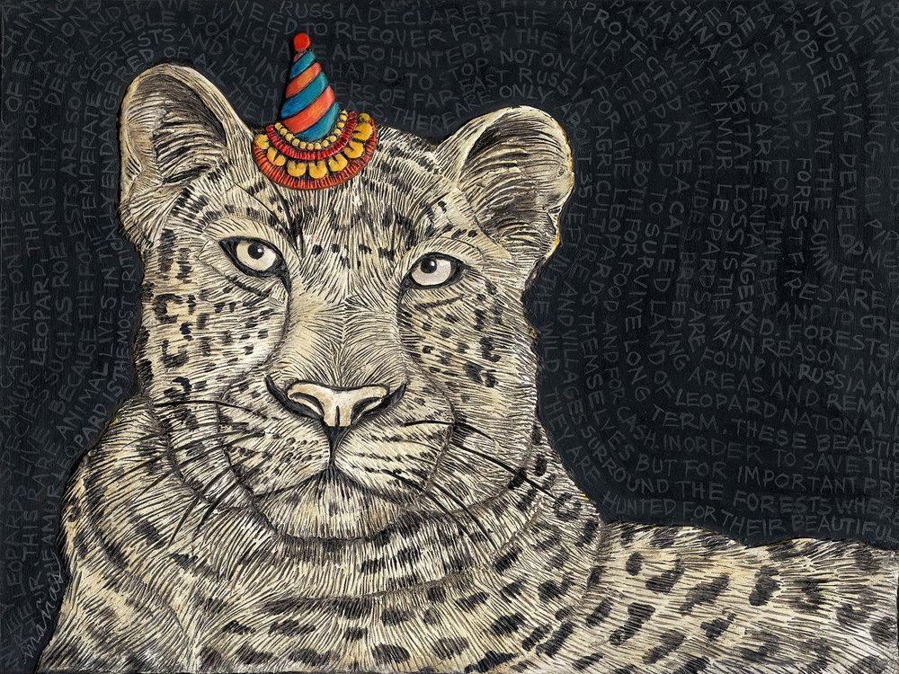 leopard lr.jpg
