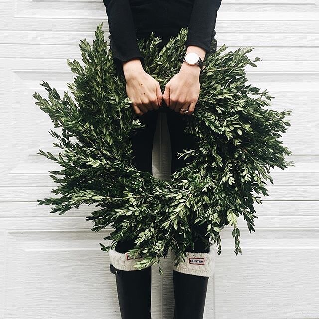 I'm thinking a DIY olive leaf wreath is a must. #christmasdecorobsessed