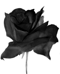 #1 Rose cut out black crop.jpeg