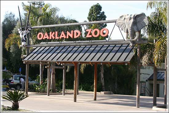 "img src=""httpwww.theparkwayevents.jpg"" alt=""San Francisco Bay Area Kids Birthday Party Event Planner Oakland Zoo"".jpg"