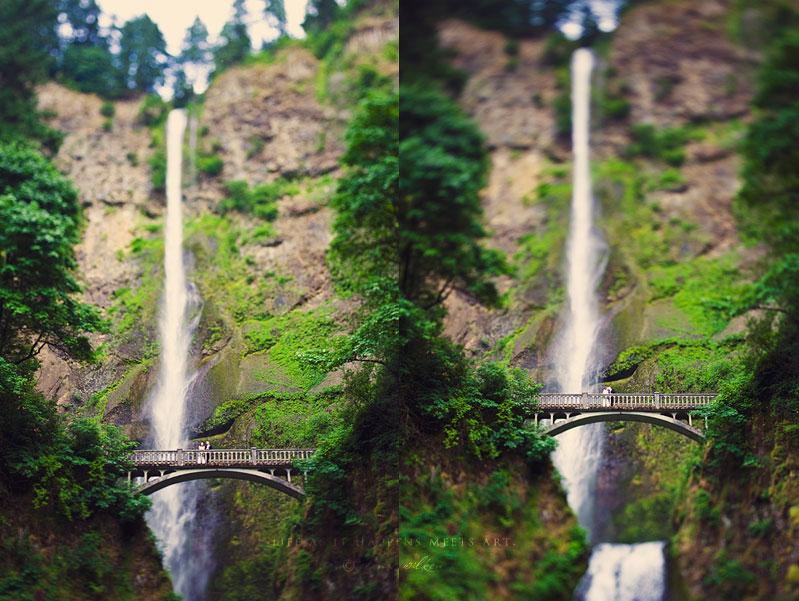 multnomah-falls-wedding-18.jpg