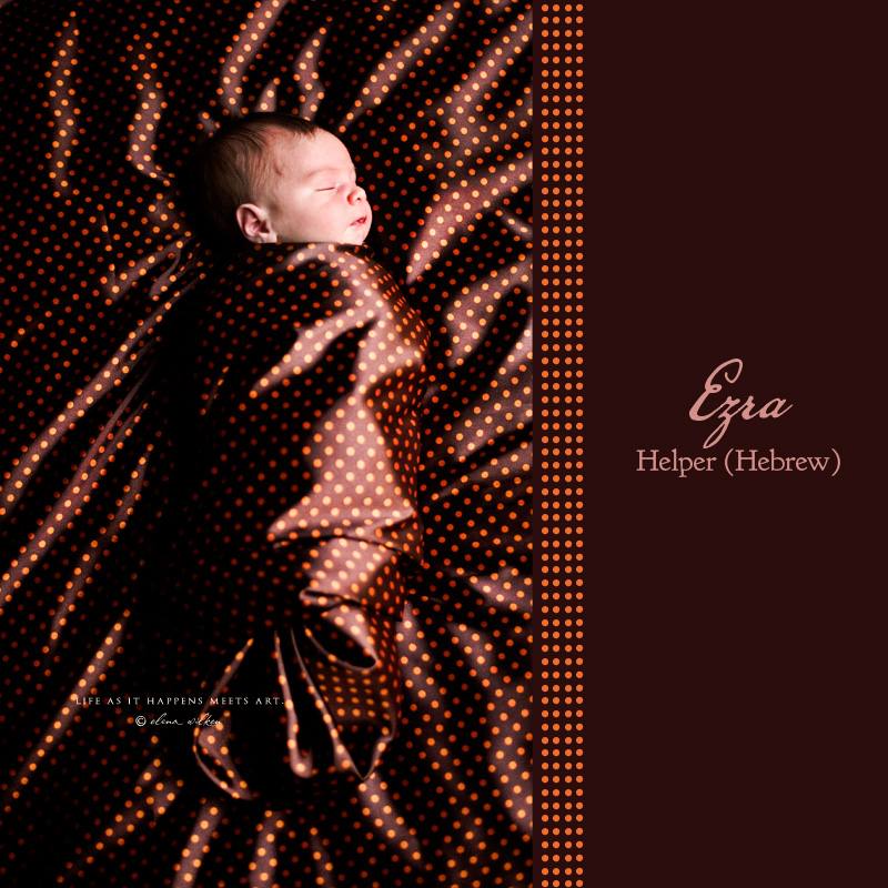 1web-newborn-photographer-Portland.jpg