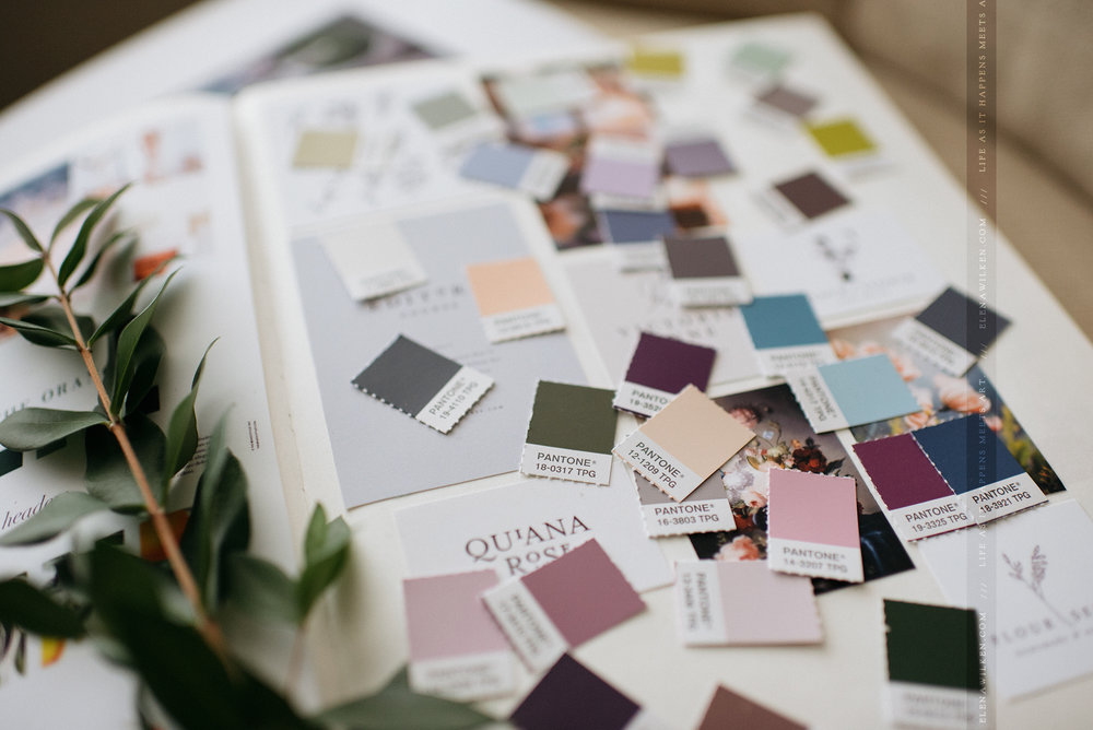 branding-ew-couture-pantone-colors.jpg