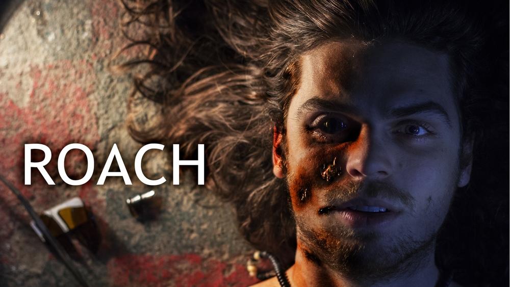 roach.jpg