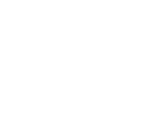 The Carole Group Ltd
