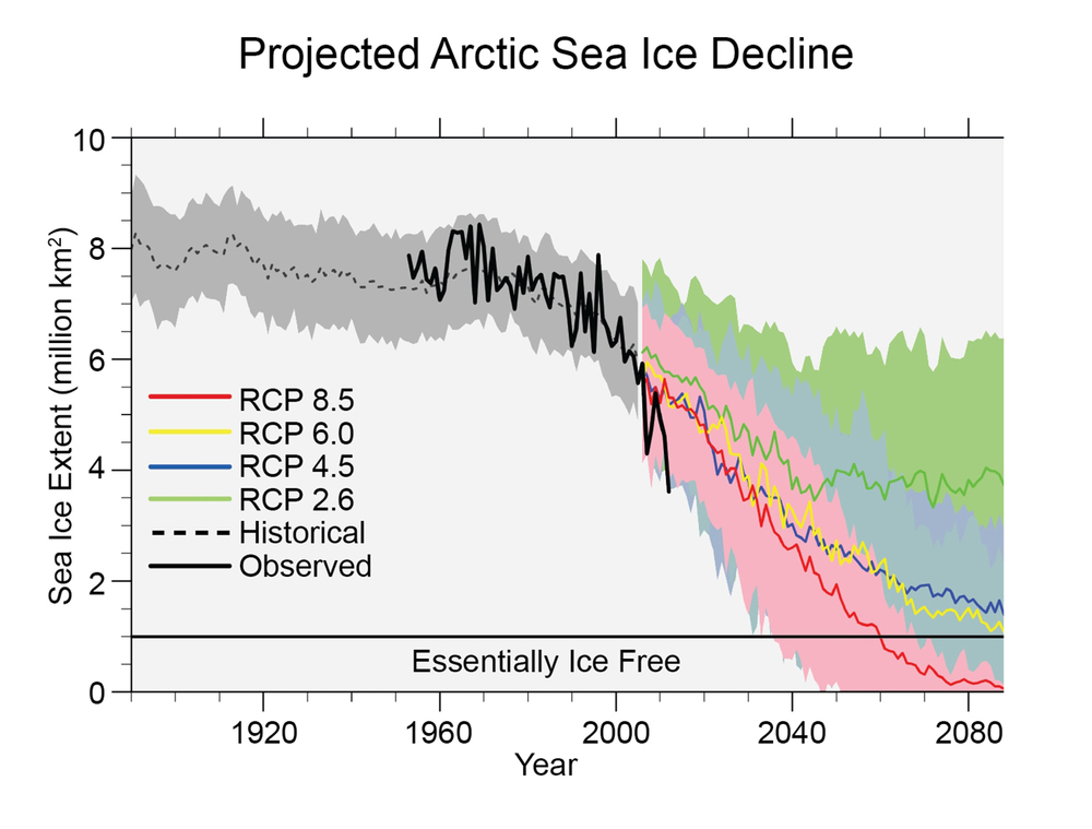 projected-arctic-sea-ice-decline-graph.jpeg