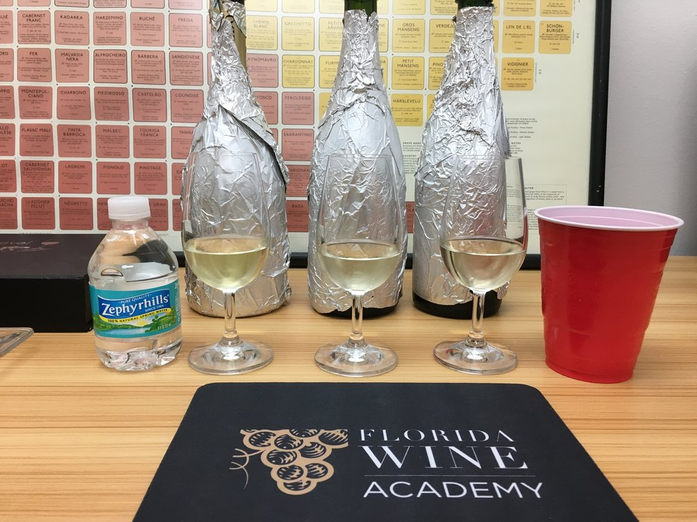 Sparkling Wines Blind Tasting at The Florida Wine Academy