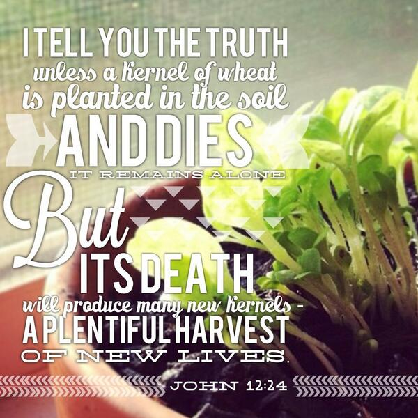 John 12:24, death that produces life