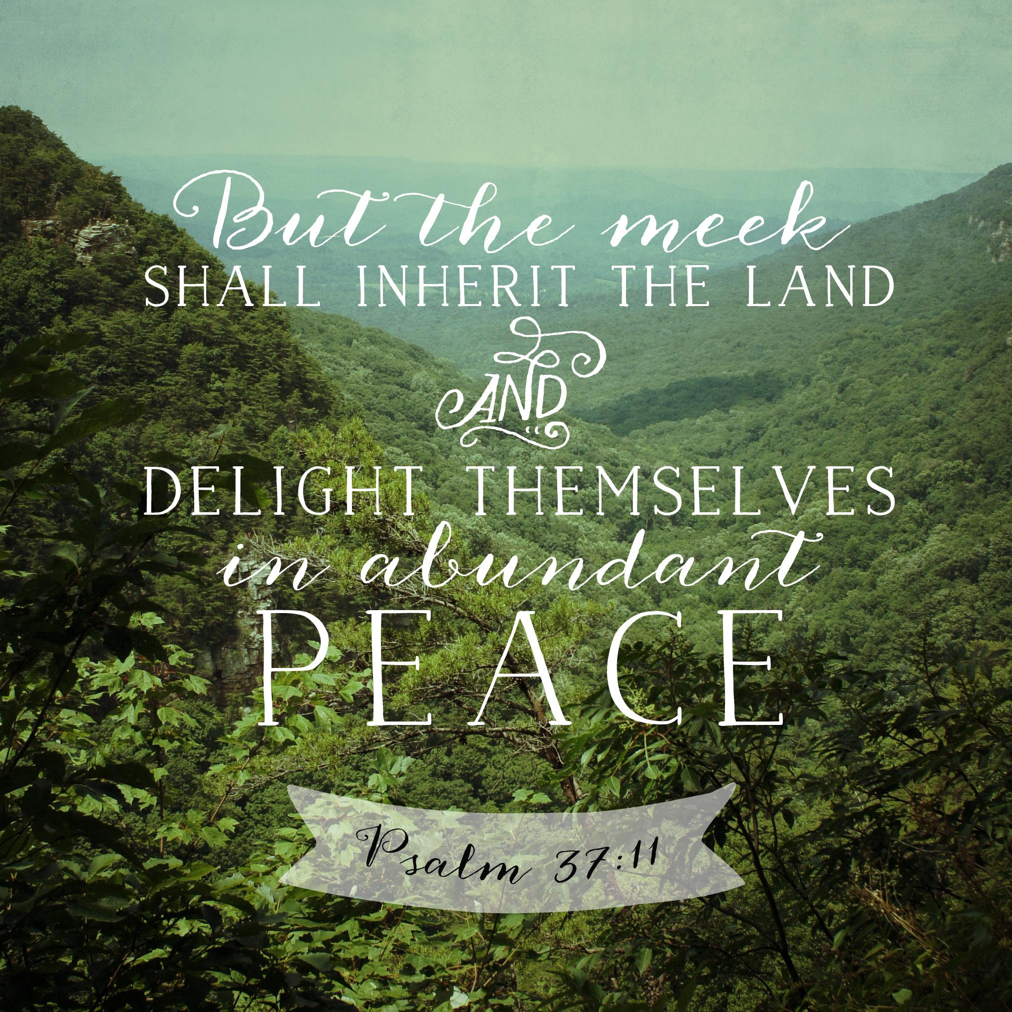 Psalm 37:11