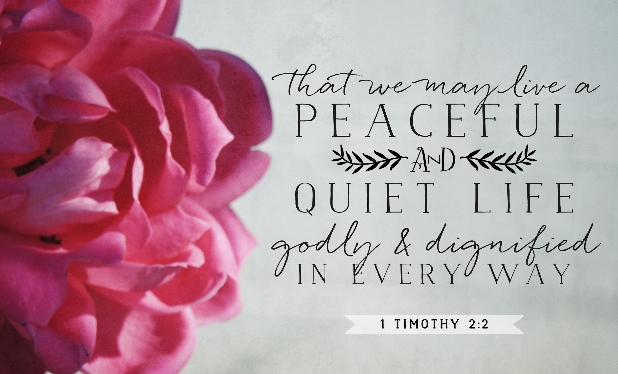 1 Timothy 2:2