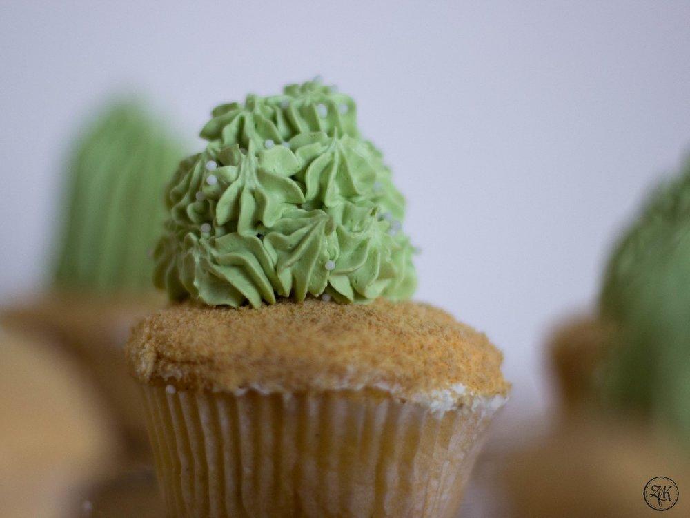 ZfK_Kaktus_Muffins_02