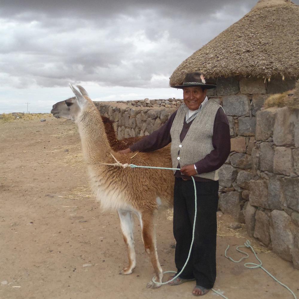 Alpaca_Man_Square.jpg