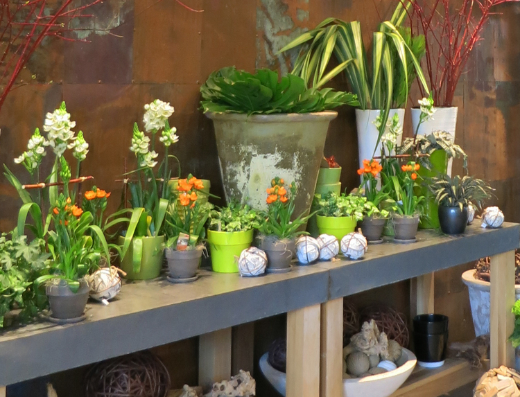 10 Best Montreal Decor Shops Laurier West And Mile End Stephanie