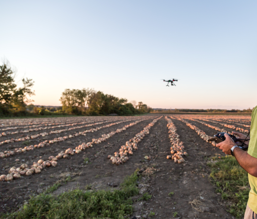 Drone Usage in Agriculture