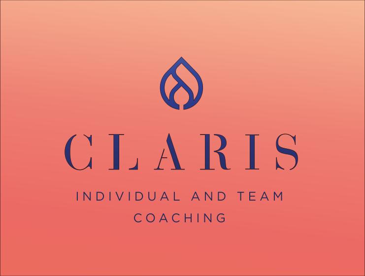 individual-team-coaching.jpg