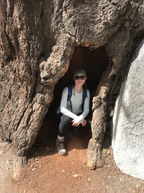 Laura pauses to snap a quick pic during a day-long hike in Yosemite during spring break.