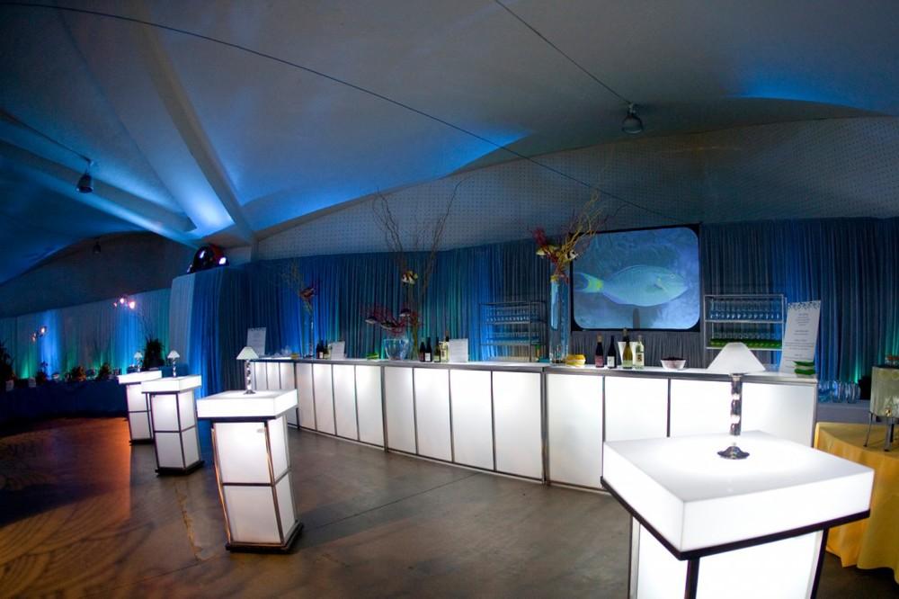 abd-meetings-events-alegria-by-design-corporate-santa-barbara-under-the-sea (12).jpg
