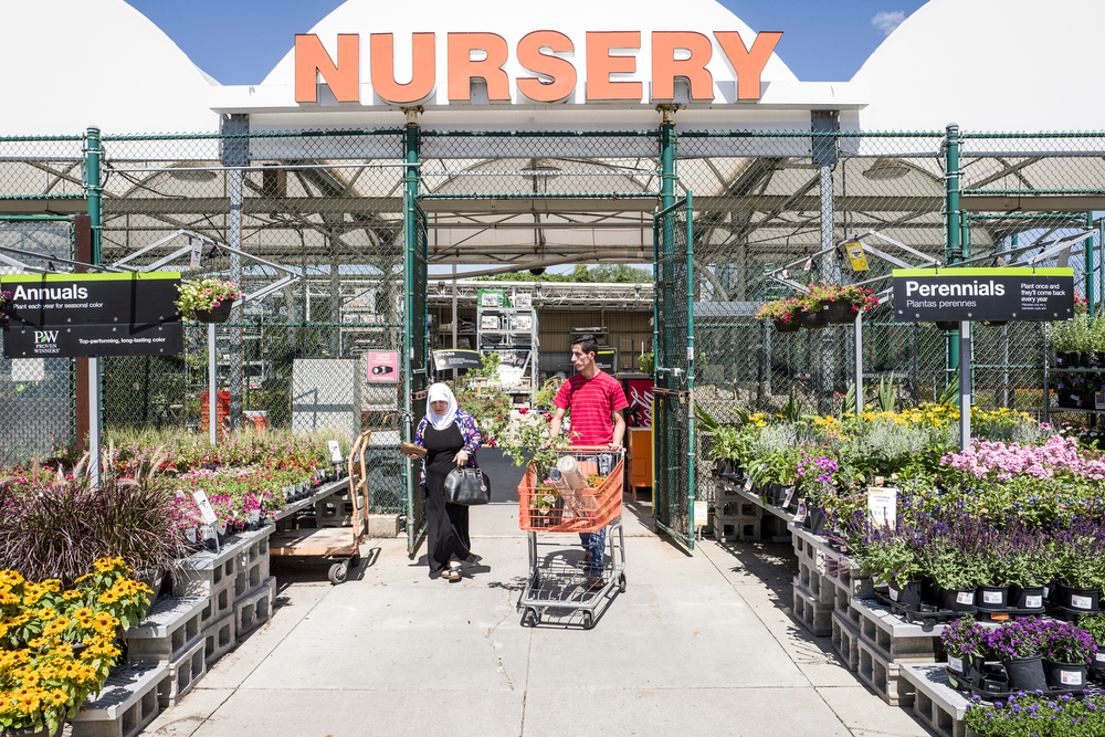 Nedal Al Hayek helps pick out plants at Home Depot for a local landscaping job. Nedal spent three years studying to be an engineer in Syria, but without his college transcript in the United States, has had to rely on landscaping jobs to make a living.