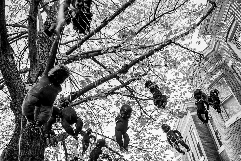USA. Baltimore, Maryland. April 28, 2015 : Black baby dolls hang from a tree in Baltimore, Maryland on April 28, 2015, the day after a night of clashes between police and protestors over the death of Freddie Gray a 25-year-old black man who died in police custody.
