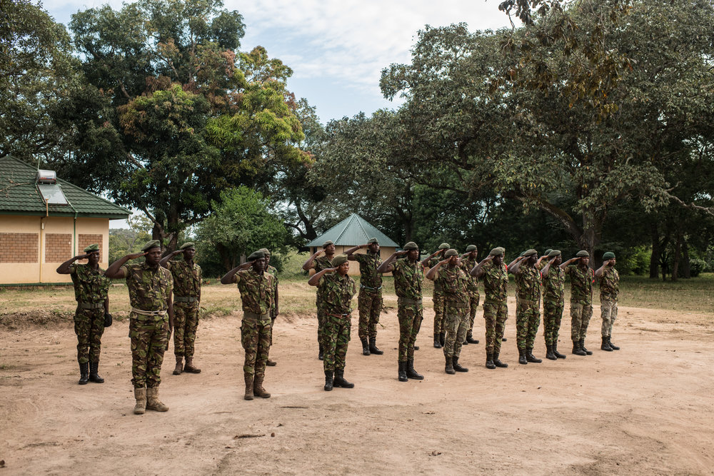 Rangers salute the Congolese flag during a ceremony at Garamba National Park Headquarters on November 27, 2017.