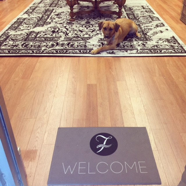 This is the beautiful welcome mat given to me by a couple of great friends! My dog, Winston is ready for the work to be completed and for the store to be open! And for a walk, of course.